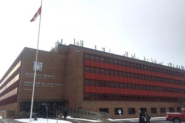 Agriculture and Agri-Food Canada (AAFC)